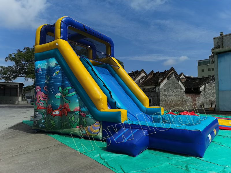 theme inflatable water slide